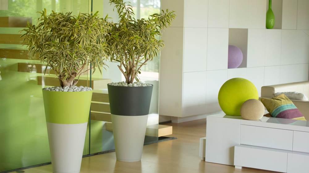 Cr er un s jour zen astuces - Pot design pour plante interieur ...