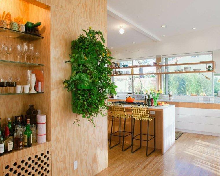 cuisine-tout-en-bois-plante-murale