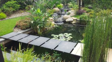 Amenager un bassin crer un bassin au jardin les tapes cls for Amenager son bassin exterieur